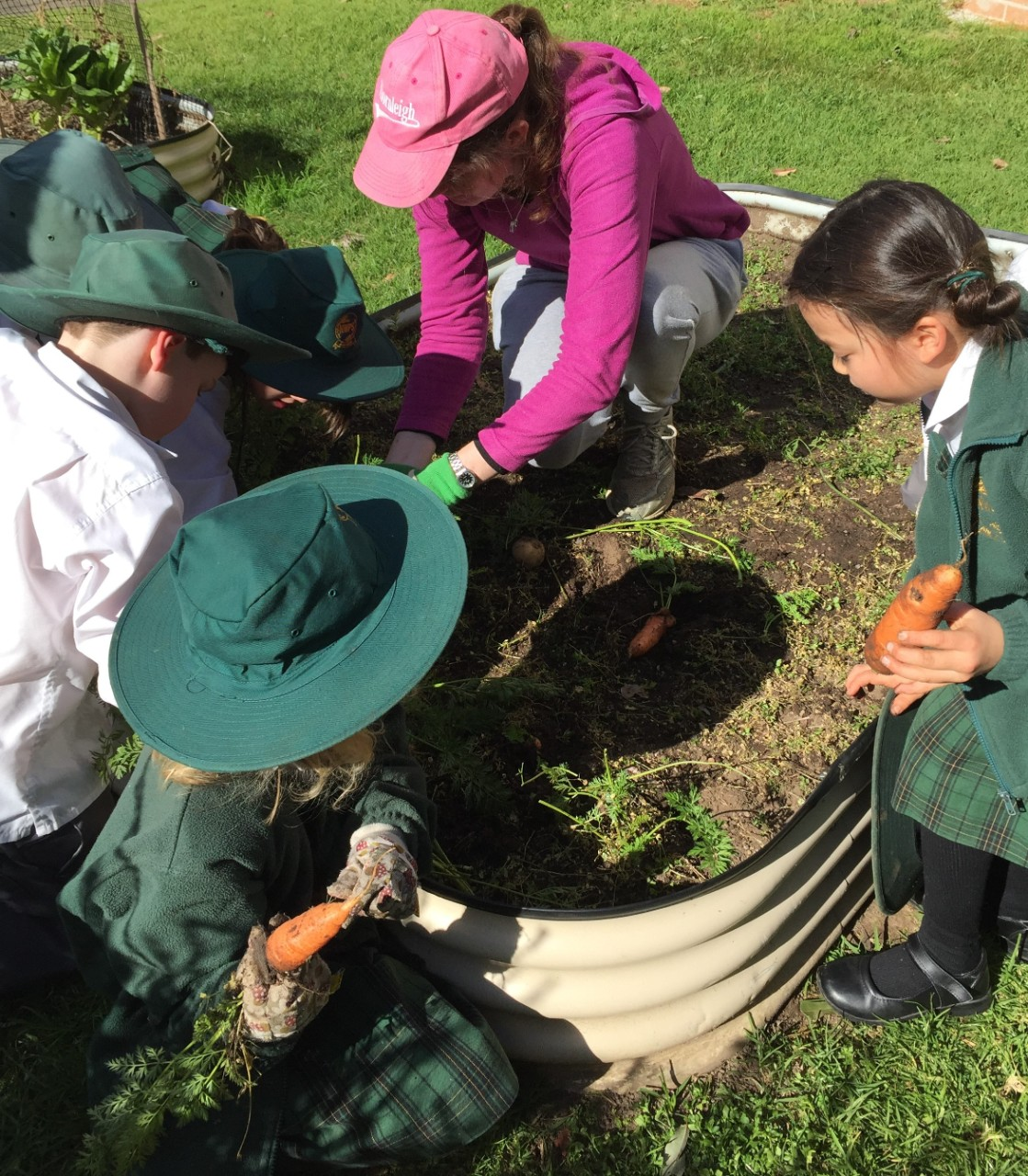 Children and teacher are planting during garden club session